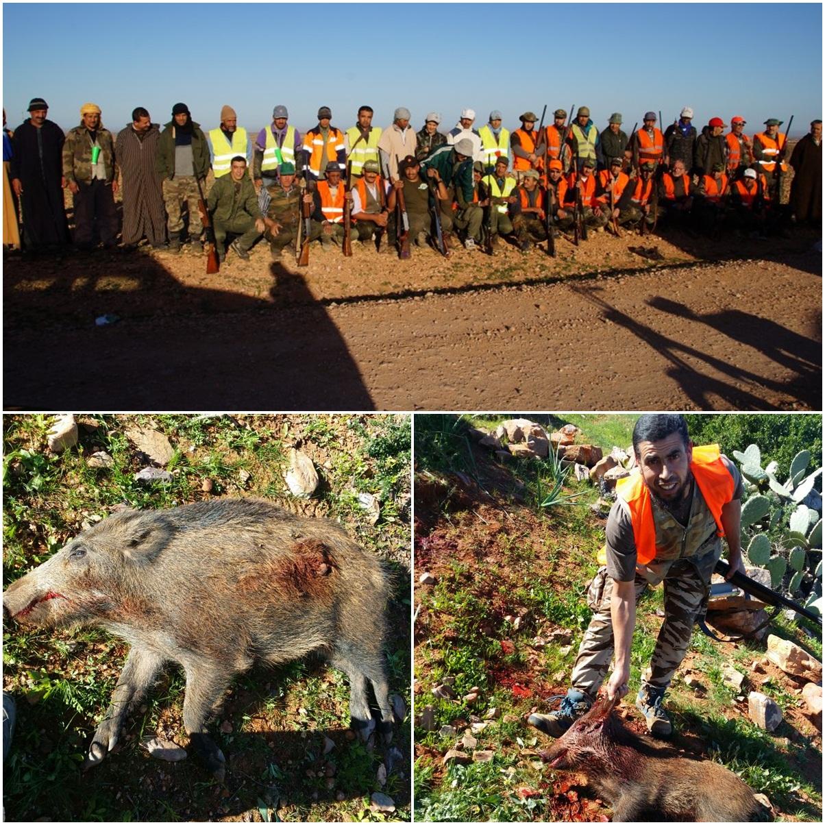 إرسموكن : عملية إحاشة الخنزير البري بجبل وارزميمن ( صور )