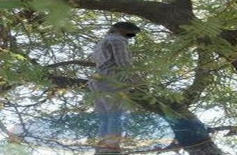 ايت ملول : العثور على جثة شاب عشريني معلقة على شجرة