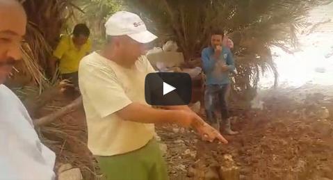 بالفيديو : شــاهد معاناة ساكنة إكنان بأفلا إغير دائرة تافراوت مع الفيضانات المتكررة