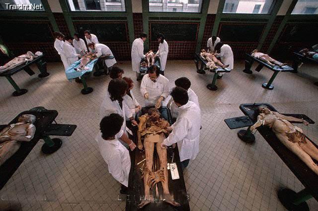 طالبة طب  تتفاجأ بجثة أخيها المعتقل على طاولة التشريح