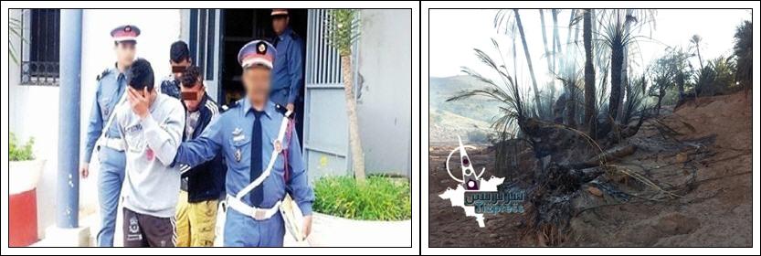 تيزنيت :اعتقال أربعة اشخاص بتهمة اضرام النار في أشجار النخيل بوجان