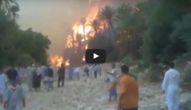 بالفيديو : طاطا …النيران تحاصر تمسولت بسموكن