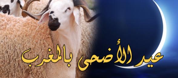 المغرب يحتفل بعيد الأضحى المبارك يوم الجمعة فاتح شتنبر
