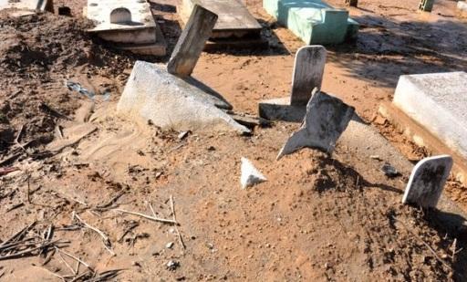 الكلاب الضّالة… تنتهك حُرمة مقبرة بجماعة أكلو