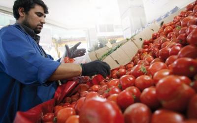 مستثمر فلسطيني ينتحر باشتوكة والفدرالية البيمهنية تطالب بفتح تحقيق