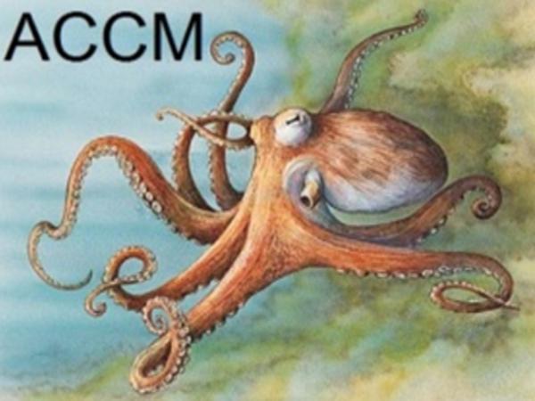 بلاغ للجمعية المغربية لربابنة صيد الرخويات