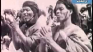 المسيرة الخضراء و لحظات تحرير الصحراء المغربية