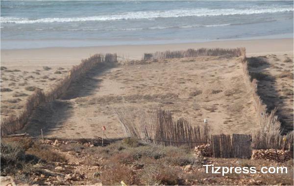 """جمعية مصطاف شاطئ أزرو زكاغن بأكلو : اشكالات التجزئ العقاري بالمنطقة """"ازرو زكاغن"""" نموذجا"""