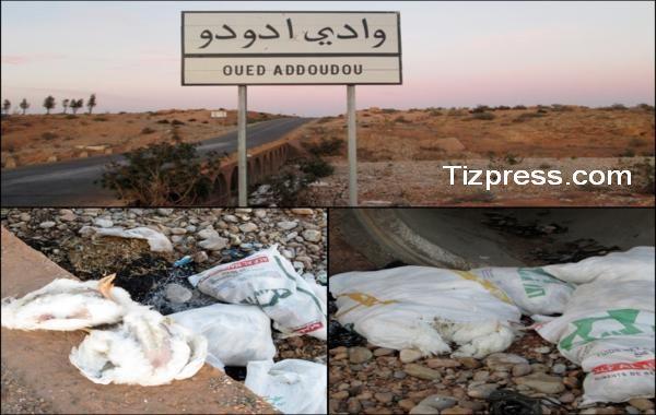 بونعمان : شكاية ضد مجهولين يقومون برمي بقايا الدجاج الميت بالقرب من محل مخصص لتربية الدواجن