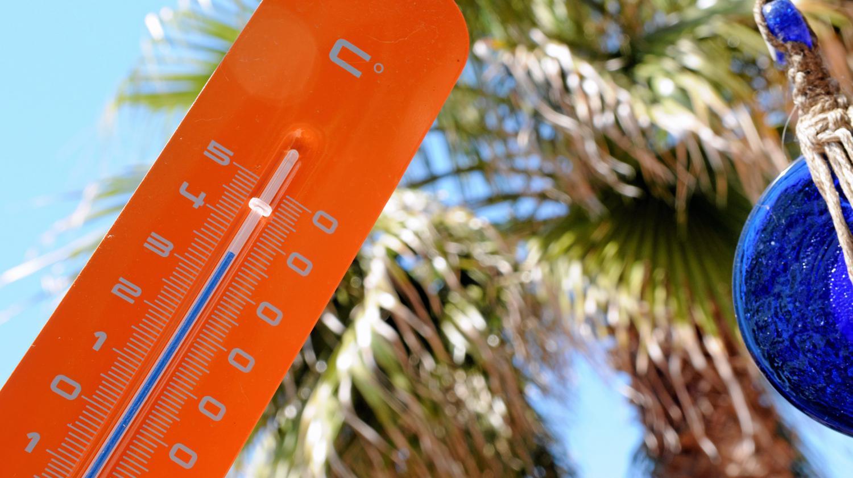 طقس حار ورياح قوية اليوم  الإثنين بجل الأقاليم