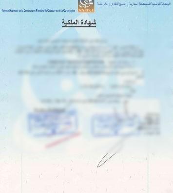 شهادة الملكية أصبحت متاحة عبر الأنترنيت