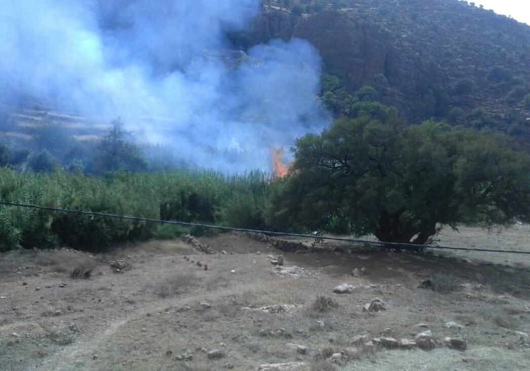 """أربعاء أيت أحمد: النيران تُحول جزء من واحة """"أكني نتيزكت"""" إلى رماد"""