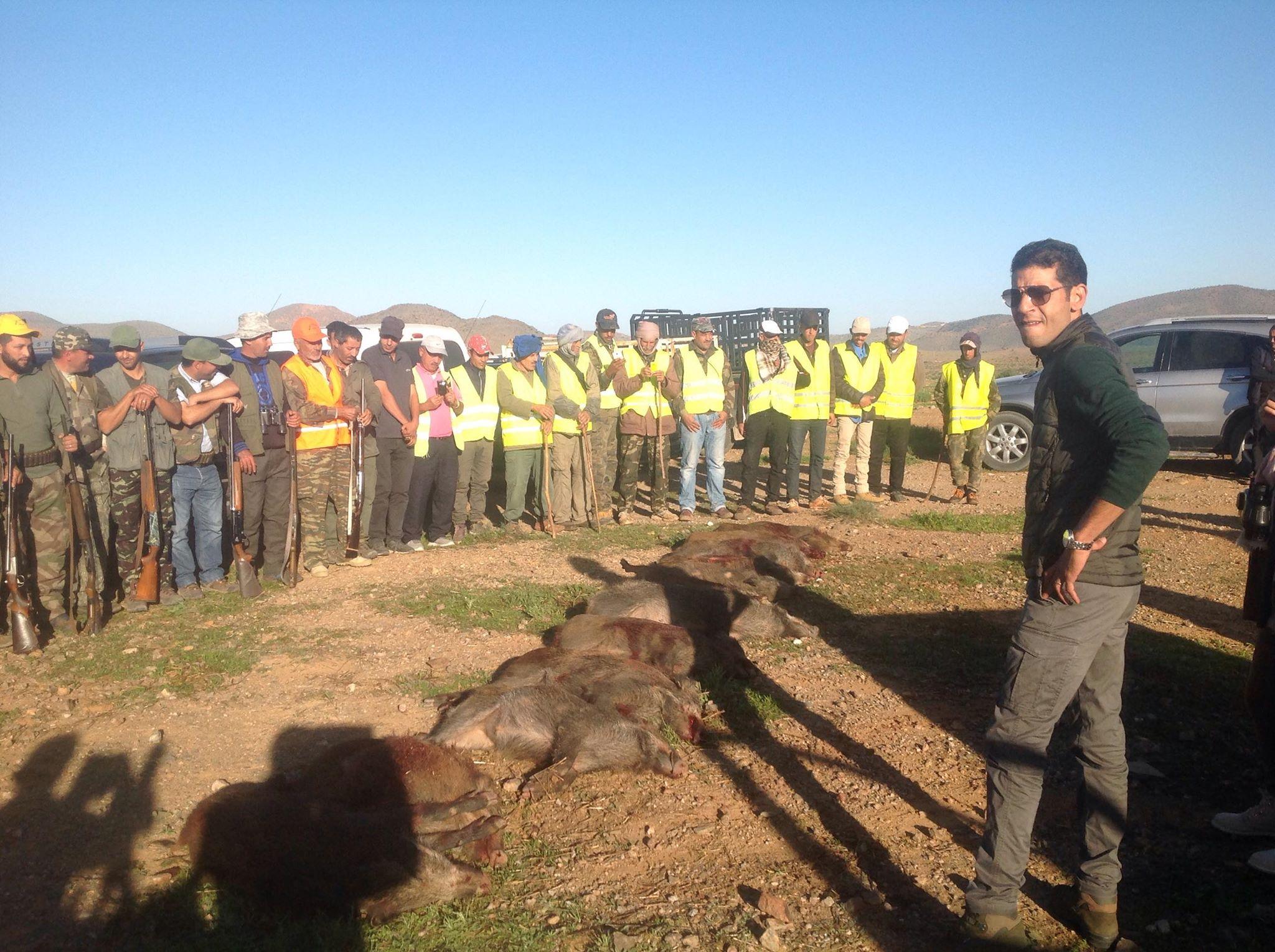 تيزنيت :  هذه حصيلة عملية احاشة الخنزير البري على مستوى الاقليم والجهة