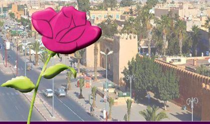 تيزنيت : حزب الوردة يستعد لعقد مجلسه الإقليمي التنظيمي