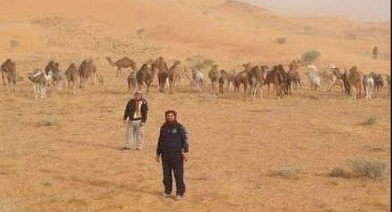 """إرسموكن : جحافل إبل الرحل تجتاح منطقة """" أملال """"والساكنة تطالب الجهات المختصة بضرورة التدخل"""
